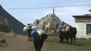 Stock Video Footage of Tengboche 39