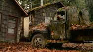Moss Covered Truck Stock Footage