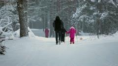 Granddad with grandchildren helping skiing - stock footage