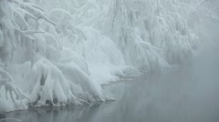 Unfrozen lake shore Stock Footage