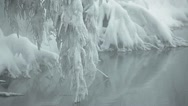 Close up of snowy branch over water Stock Footage