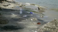 Polluting Plastic and Dead fish on a Beach Stock Footage