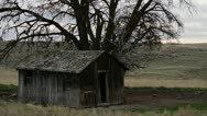 Abandoned farm 11 Stock Footage