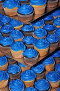 blue frosted cupcakes - stock photo