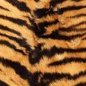 Stock Photo of stripes on a tiger pelt