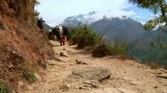 Everest Yaks 1 Stock Footage