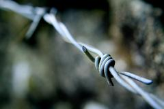 Barbed Wire - Close Up, Blurred Background - Industrial, Danger Stock Photos