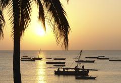 Stock Photo of idyllic sundown in africa