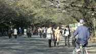 People enjoy a sunny day in Ueno park in Tokyo, Japan Stock Footage