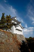 nagoya castle - stock photo