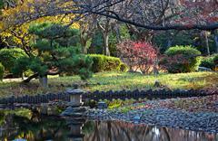Oriental landscape Stock Photos