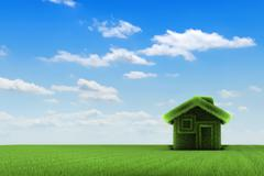 House and field Stock Illustration
