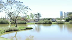 Tree, lake and buildings at Botanical Garden in Curitiba, Brazil. Stock Footage