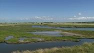 Bird reserve in coastal landscape - hold + pan left Stock Footage