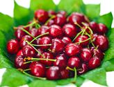 Many red wet cherry fruits (berries) on green leaves in round plate, isolated Stock Photos