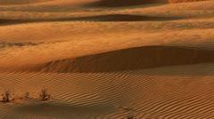 Sand dunes in desert. Sahara desert sand dunes. Desert panoramic view - stock footage