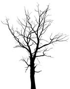 silhouette of dead tree without leaves - stock illustration