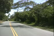 St. Thomas, The Virgin Islands, POV driving on the left, road and trees Stock Footage
