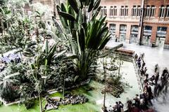 tropical green house, location in atocha train station, madrid, spain. - stock photo