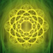 Green lotus flower and enlightenment Stock Photos