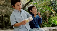 Boys Share Potato Chips From Bag Stock Footage