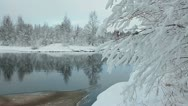 Frozen branches of the trees on the shore of warm lake Stock Footage