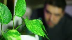 Watering plants water 1 Stock Footage