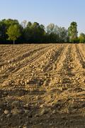 area of arable land - stock photo