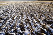 Stock Photo of ploughed field