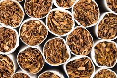 cigarette tobacco - stock photo
