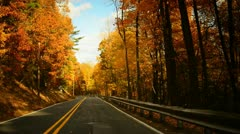 Time lapse of a drive through a hilly twisty road during glorious fall - stock footage