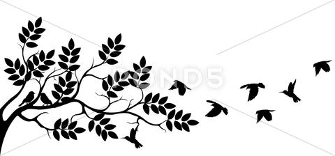 Stock Illustration of tree silhouette with birds flying