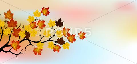 Stock Illustration of autumn tree with sky background