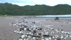 Beach pollution, washed up toxic pellets litter beach Stock Footage