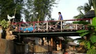 Wooden park bridge Stock Footage