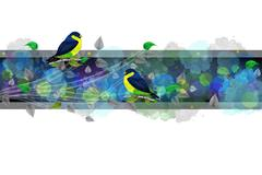 Bright border with painted birds Stock Illustration