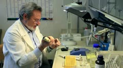 Stock Video Footage of chemist  working  in a laboratory