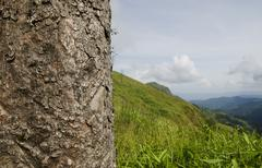 Top view of mountain, khao chang puak, kanchanaburi, thailand Stock Photos