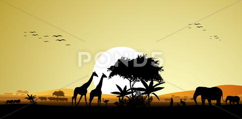 Stock Illustration of beauty silhouette of safari animal wildlife