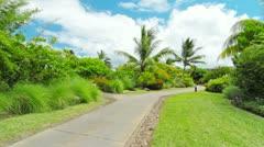Tropical landscape Stock Footage