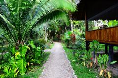 Lodge in jungles Stock Photos