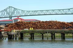 graded lumber for export in astoria or. - stock photo