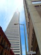 The Transamerica Pyramid in San Francisco CA. Stock Photos
