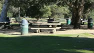 Picnic Tables Stock Footage