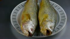 Delicious Croaker fish within dial plate.fisheries. Stock Footage