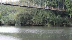River under the bridge Stock Footage