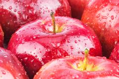 Stock Photo of Macro of fresh red wet apples
