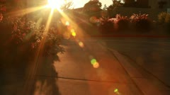 Sunset Lens Flair Stock Footage