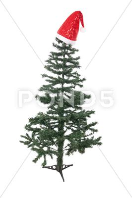 Stock photo of christmas tree