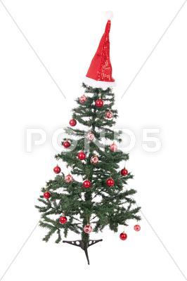 Stock photo of an isolated christmas tree